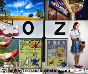 Wizard of Oz. YOU have always had the Power